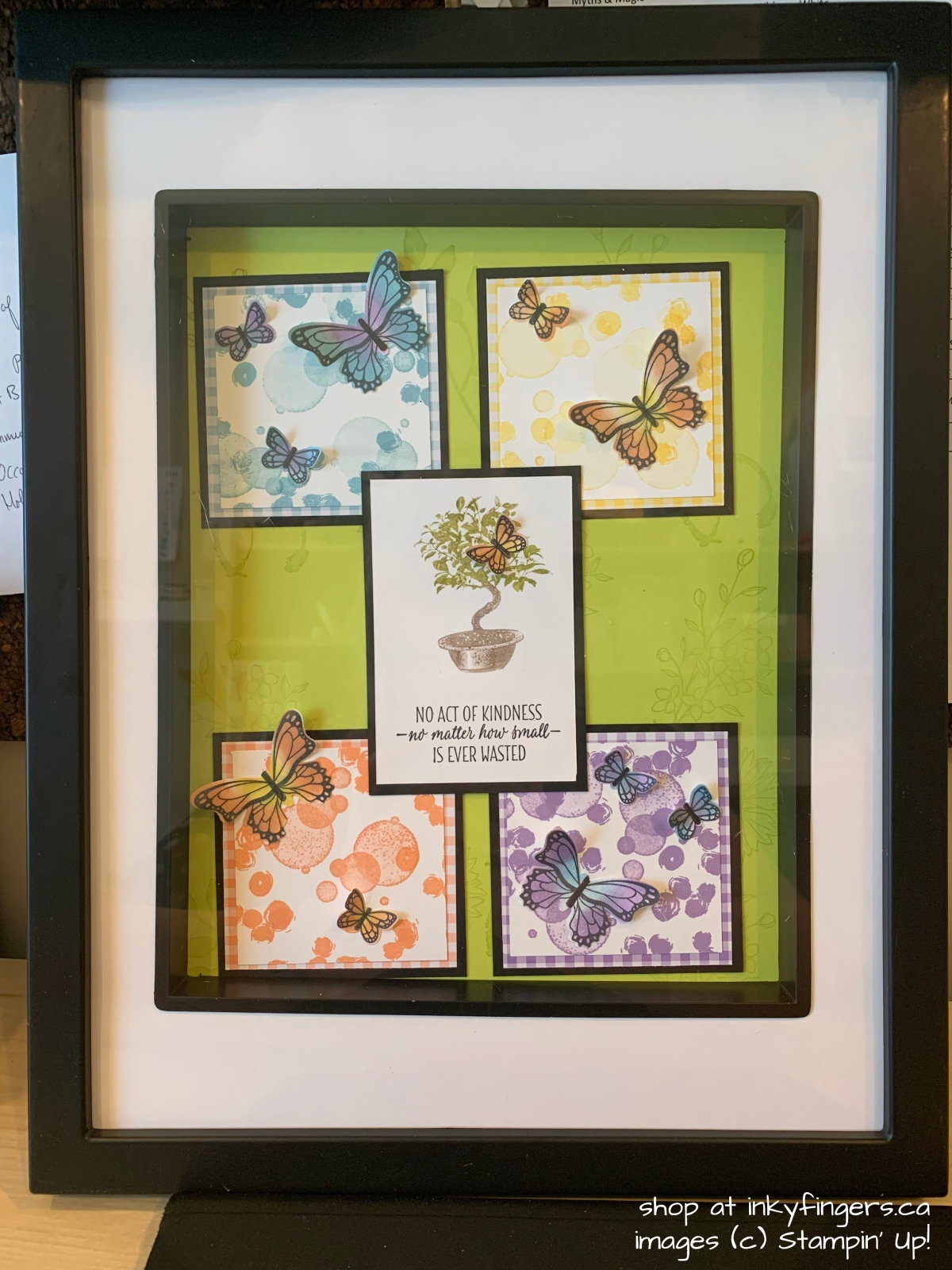 Butterfly Framed Project