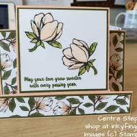Video Tutorial: Centre Step Card