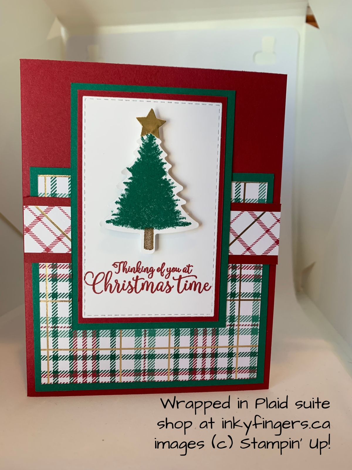 Video Tutorial: Wrapped inPlaid