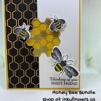 Video Tutorial: Honey Bee Bundle w/Wobble Spring!