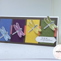 Product Spotlight: Dragonfly Garden